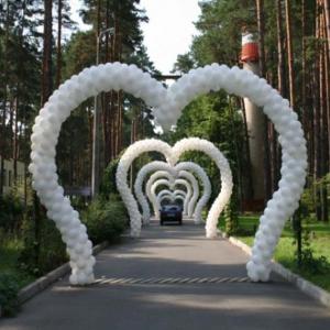 Оформление шарами свадьбы № 15