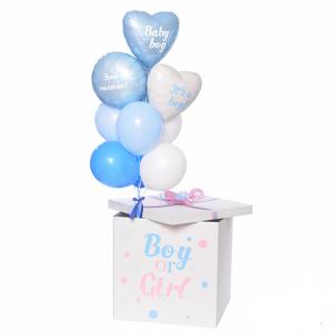 """Коробка с шарами №41 """"Мальчик или девочка"""""""