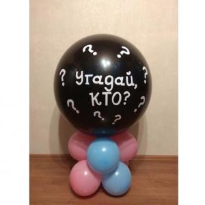 """Оформление шарами № 3 """"Мальчик или девочка"""""""
