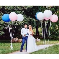 Оформление шарами свадьбы № 41