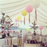 Оформление шарами свадьбы № 43