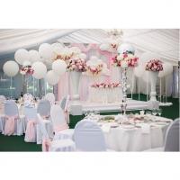Оформление шарами свадьбы № 63