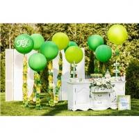 Оформление шарами свадьбы № 75
